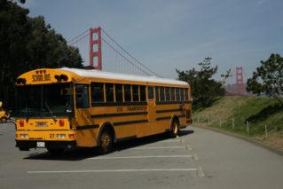 Cccyo Transportaiton248